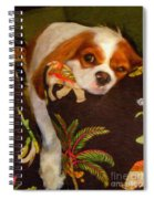 Hang In There Spiral Notebook