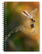 Hang On Spiral Notebook