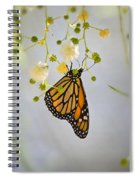 Hang On  Spiral Notebook