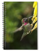 Hangin For A Meal Spiral Notebook