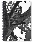 Hangin Out Spiral Notebook