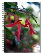 Hanging Asian Lillies Spiral Notebook