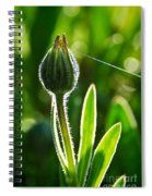 Hanging By A Thread Spiral Notebook