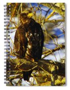 Hanging By The River  Spiral Notebook
