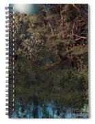Hanging Garden In Moonlight Spiral Notebook