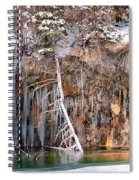 Hanging Lake Spiral Notebook