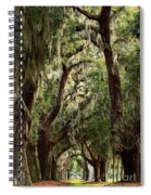 Hanging Moss And Giant Oaks Spiral Notebook