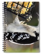 Hanging On For Food Spiral Notebook