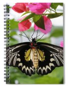 Hanging On Spiral Notebook