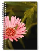 Hanging Out With A Flower Spiral Notebook