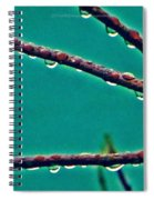 Hanging Pearls Spiral Notebook