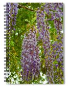 Hanging Wisteria Blossoms Spiral Notebook