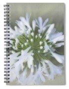 Hannah Spiral Notebook