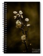 Happily Ever Aster Spiral Notebook