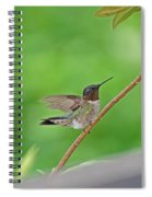 Happy As A Hummer Spiral Notebook