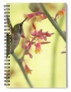 Happy As A Hummingbird  Spiral Notebook