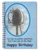 Happy Birthday Greetings - Dried Teasel Thistle Flower Head Spiral Notebook