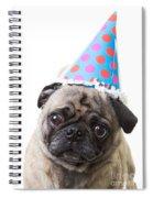 Happy Birthday Pug Card Spiral Notebook