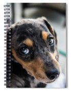 Happy Dachshund Spiral Notebook