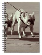 Happy Dogs 14 Spiral Notebook