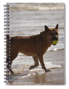 Happy Dogs 7 Spiral Notebook