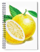 Happy Grapefruit- Irina Sztukowski Spiral Notebook
