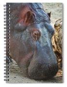 Happy Hippo Spiral Notebook