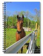 Happy Horse Spiral Notebook