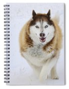 Happy Husky Spiral Notebook