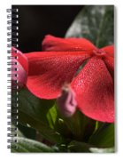 Happy In The Light Spiral Notebook