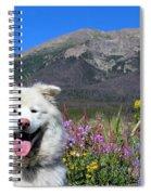 Happy Mountain Dog Spiral Notebook