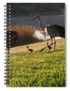 Happy Sandhill Crane Family - Original Spiral Notebook