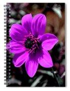 Happy Single Juliet Spiral Notebook