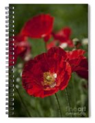 Happy Summer... Spiral Notebook
