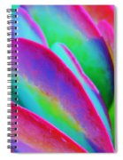 Happy Time Spiral Notebook