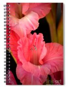 Happy To Be Glad Spiral Notebook