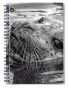 Harbor Grey Spiral Notebook