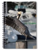 Harbor Pelican And Gull Spiral Notebook