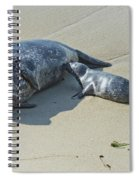 Harbor Seal Suckling Young Spiral Notebook