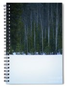 Hard Line Winter Spiral Notebook