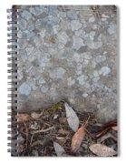Hardass Spiral Notebook