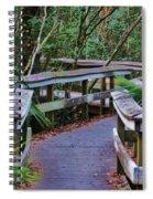 Hardwood Hammock Spiral Notebook