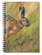 Hare Spiral Notebook