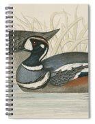Harlequin Duck Spiral Notebook