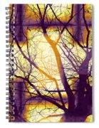 Harmonious Colors - Violet Yellow Orange Spiral Notebook
