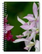 Harmony Spiral Notebook