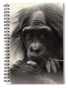 Harmony With Nature Spiral Notebook