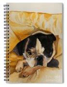 Harold's Bed Spiral Notebook