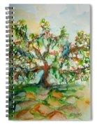 Harry Lauders Walking Stick  Spiral Notebook