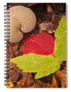 Hart Of A Puff Ball Spiral Notebook